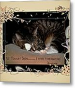 Not Tonight Dear... - Featured In Comfortable Art Group Metal Print