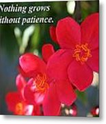 Nothing Grows Without Patience Metal Print