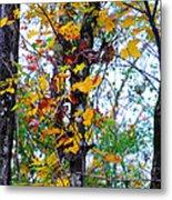 November Leaves Metal Print