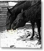 Now Share Please Metal Print