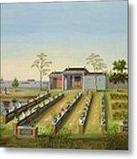 Nursery Garden, C.1820-40 Metal Print