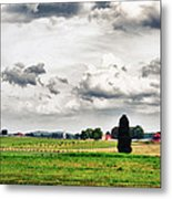 Nurturing The Land Metal Print by Rhonda Negard