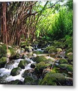 Banyan Nuuanu Stream Metal Print