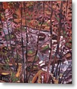 Suzie's Creek Metal Print