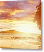 Nz Sunlight Metal Print by Les Cunliffe
