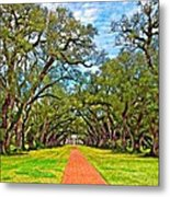 Oak Alley 3 Oil Metal Print