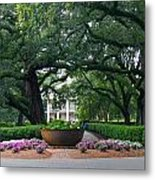 Oak Alley Courtyard Metal Print