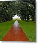 Oak Alley Path Metal Print
