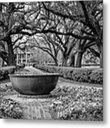 Oak Alley Plantation Landscape In Bw Metal Print