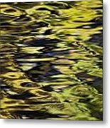 Oak And Maple Trees Reflections In Metal Print