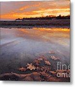 Oak Leaf And Beach Sunset Metal Print