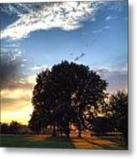 Oak Tree At The Magic Hour Metal Print