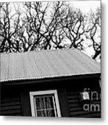 Oak Tree Farm House Metal Print