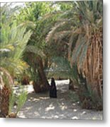 Oase Rest Desert Sinai Egypt Metal Print