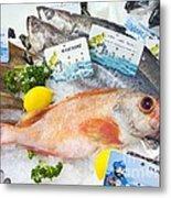 Ocean Perch On A Fish Counter Metal Print