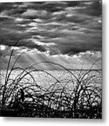 Ocean Rays Black And White Metal Print