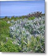 Ocean Vegetation Metal Print
