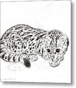 Ocelot Kitten Metal Print