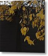 Ochre And Umber Metal Print