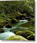 Oconaluftee River Metal Print