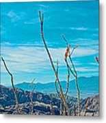 Ocotillo At Top Of Ladder Canyon With Salton Sea In Distance In Mecca Hills-ca Metal Print