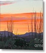 Ocotillo Sunset Metal Print