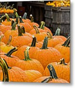 October At The Farm - Pumpkins Metal Print