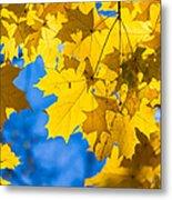 October Blues 8 - Square Metal Print