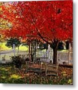 October Colors Metal Print