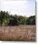 October Day Metal Print