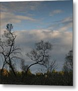 October River Reflections Metal Print