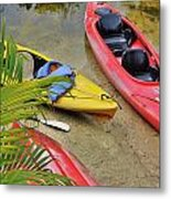 Odd Boat Out Metal Print