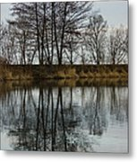 Of Mirrors And Trees Metal Print