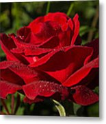 Of Red Roses And Diamonds  Metal Print