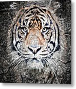 Of Tigers And Stone Metal Print