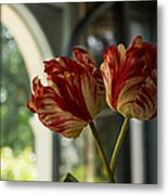 Of Tulips And Windows Metal Print