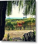 Off Into The Horizon Wine Country Views Metal Print