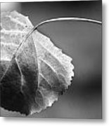 Off The Branch Metal Print