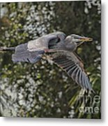 Off To The Nest 2012 Metal Print