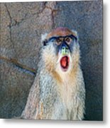Oh Did You See That? Metal Print