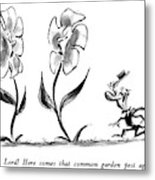Oh, Lord!  Here Comes That Common Garden Pest Metal Print