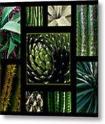 Oh My Cacti Metal Print