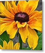 Oh Summertime Metal Print
