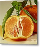 Oh Sweet Nectar Of Nature Metal Print