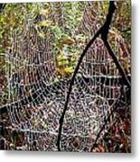 Oh What A Web We Weave Metal Print