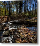 Ohio Fall Beauty Scene Metal Print