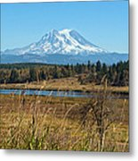 Ohop Valley Of Layers Metal Print