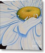 Oil Painting - Daisy Metal Print