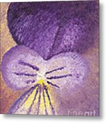 Oil Painting Of Pansy - Viola Tricolor Metal Print