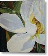 Oil Painting - Sydney's Magnolia Metal Print